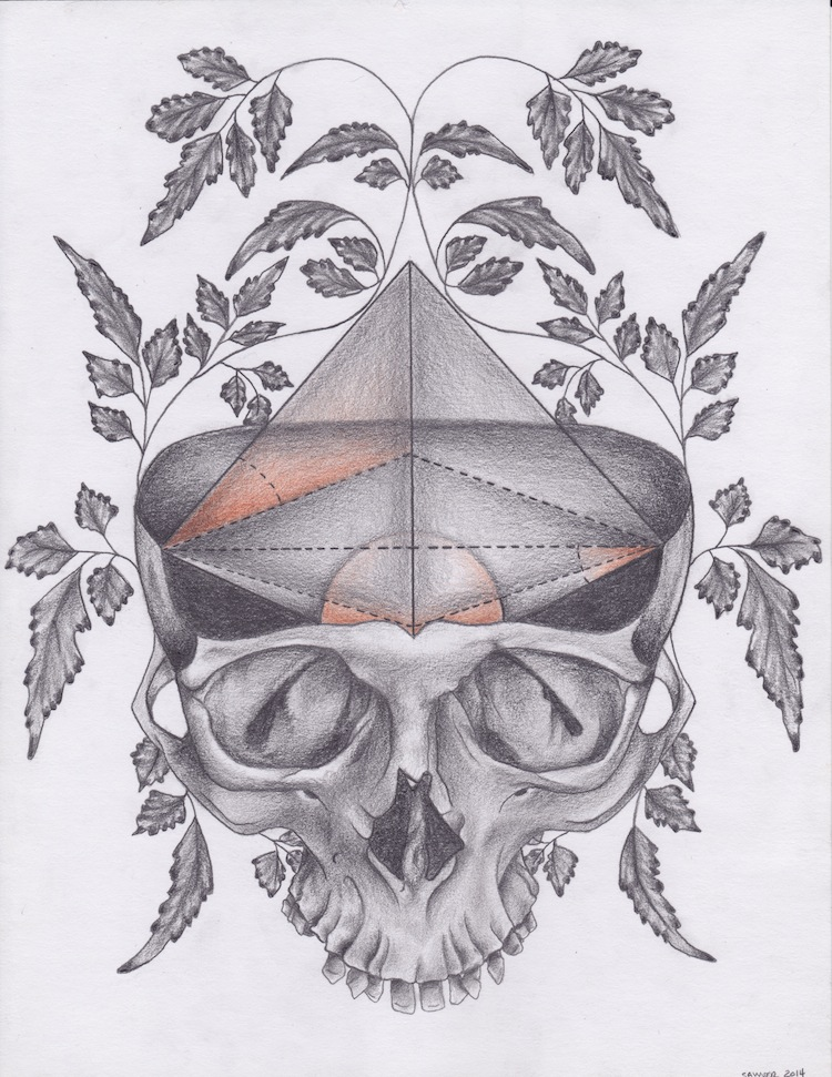 Skull, Geometry and Vine Design (Fully Shaded)